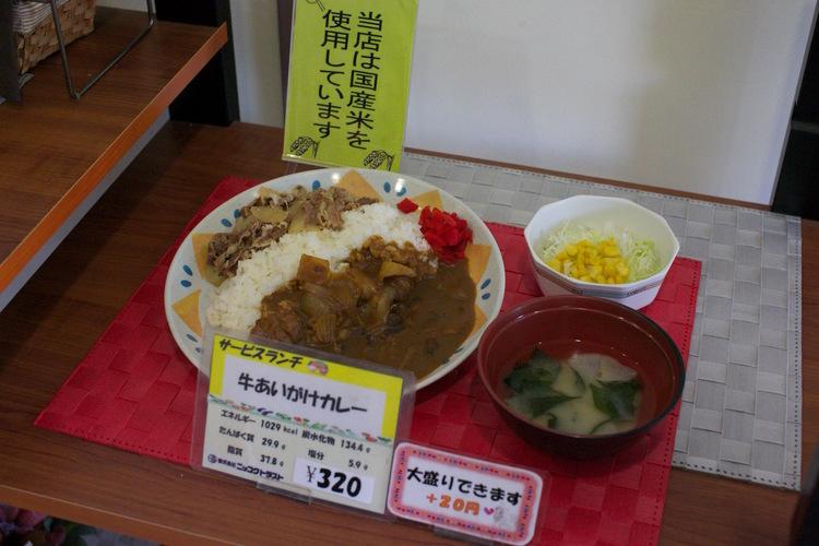 東京撮影所12