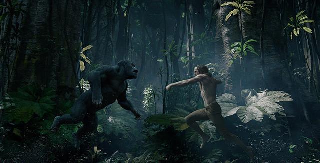 ジャングル映画