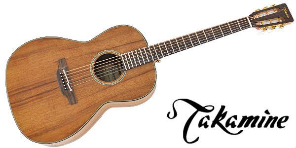 タカミネ_ギター