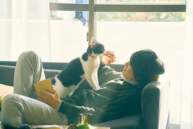 (C)2018「旅猫リポート」製作委員会 (C)有川浩/講談社